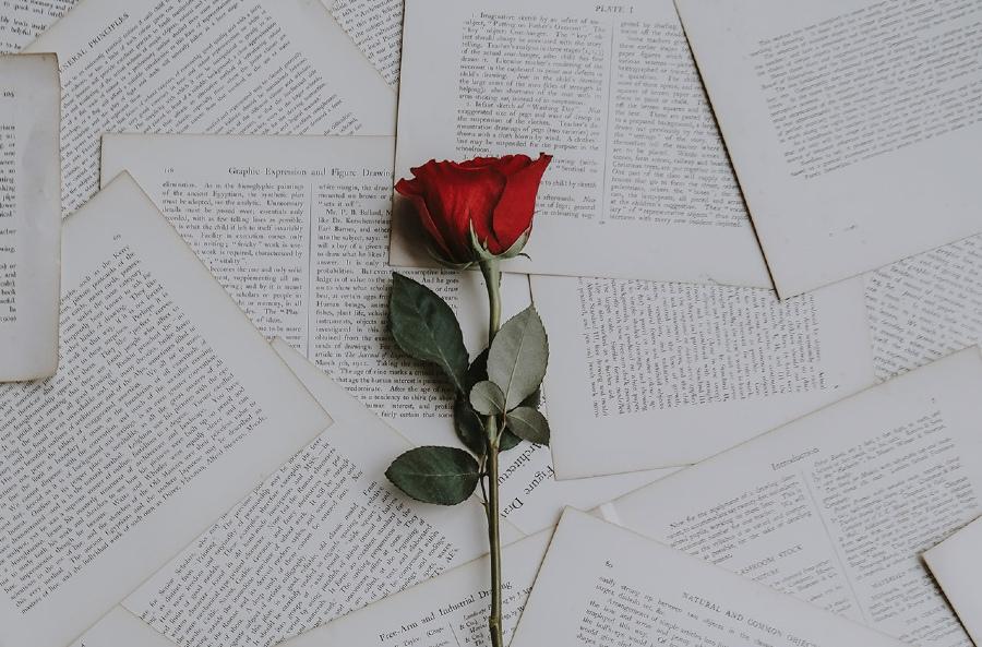 La Sant Jordi fête des roses et des livres